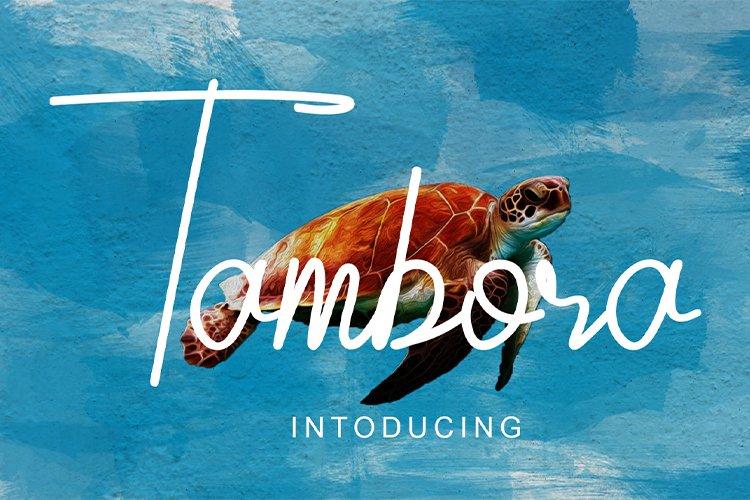Tambora example image 1