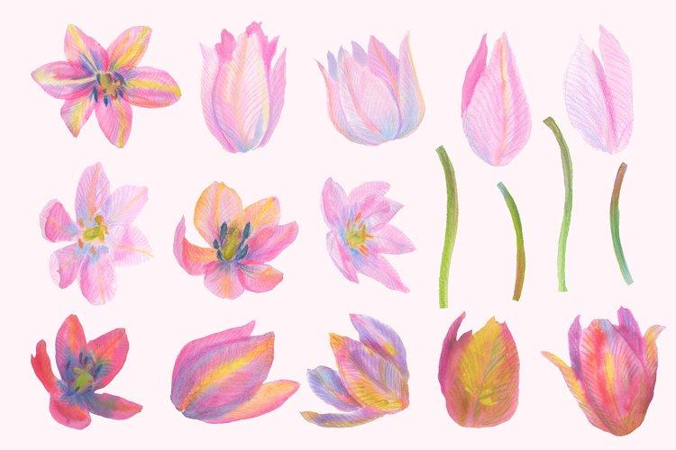 Floral Design Pack (watercolor & pastel) - Free Design of The Week Design6