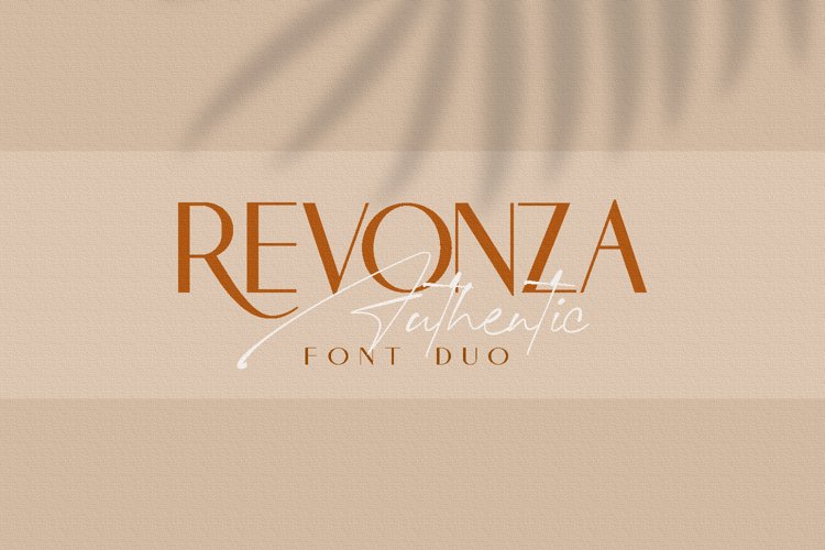 REVONZA SANS - FONT DUO example image 1