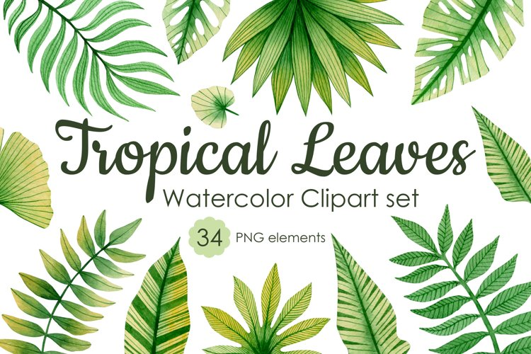 Watercolor tropical leaves clipart set. example image 1