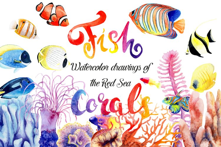 Watercolor drawings of bright fish and corals example image 1
