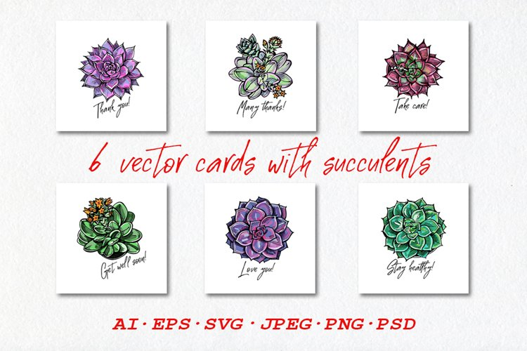 6 vector cards with succulents | AI EPS SVG JPEG PNG PSD