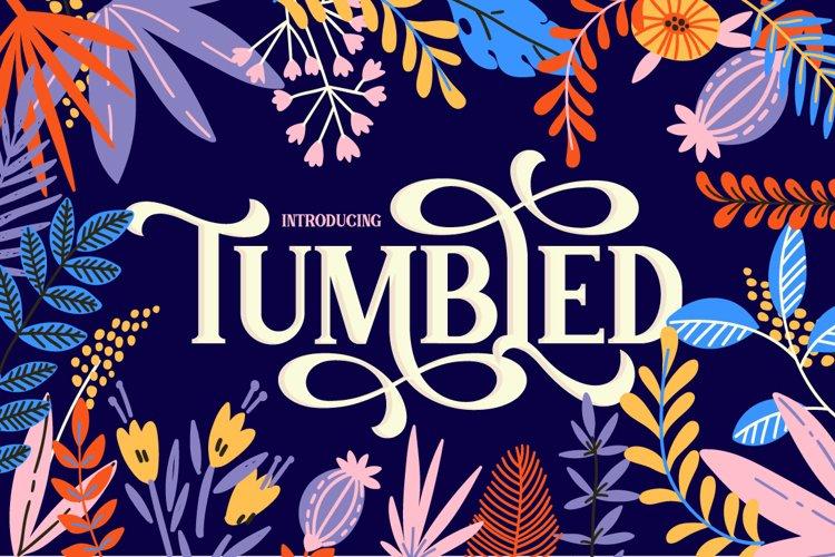Tumbled Serif Font example image 1