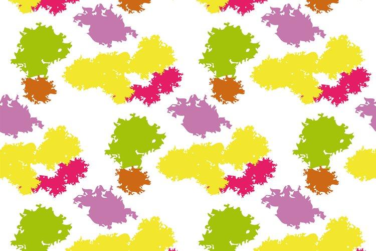 The pattern of spots. example image 1