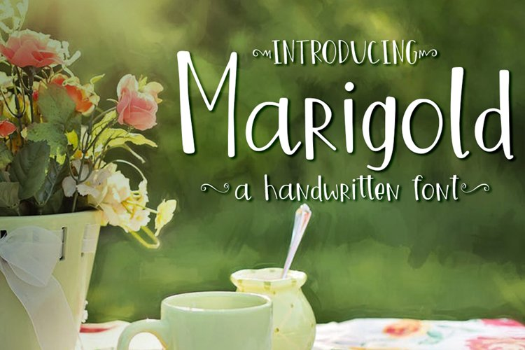 Marigold Font example image 1