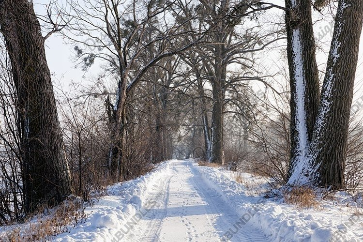 narrow snow-covered winter road example image 1