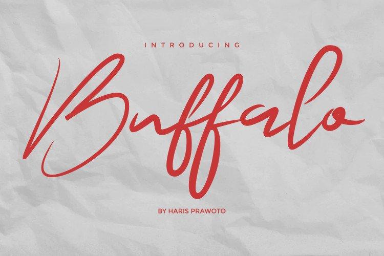 Buffalo Signature - Modern Signature example image 1