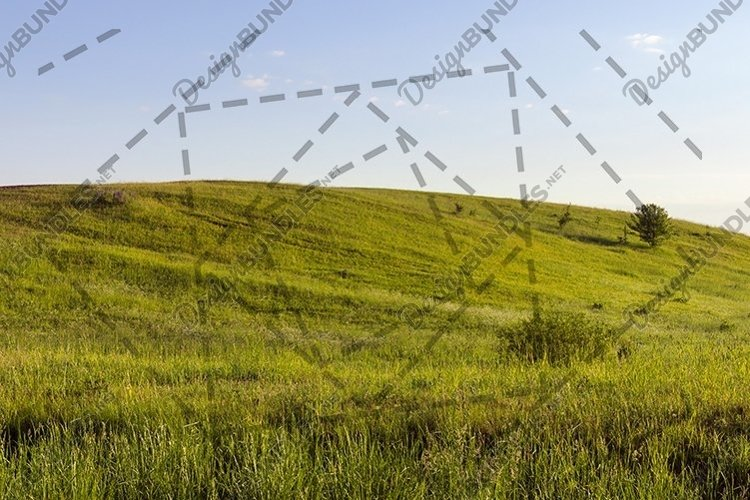 green grass hill example image 1