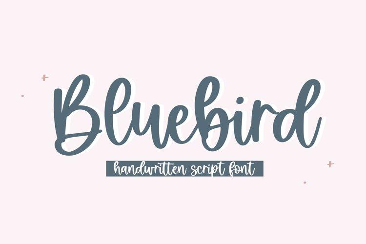 Bluebird - Handwritten Script Font example image 1
