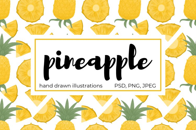 Pineapple hand drawn clip art example image 1