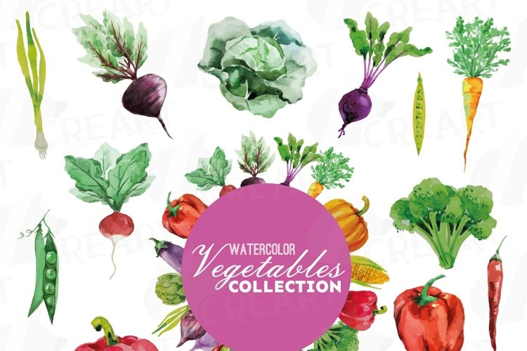Watercolor Vegetables clip art pack, green and colorful vegetables. Healthy Food, eps png, jpg, svg, vector files included, instant download