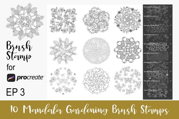 10 Procreate Brushes Mandala Procreate Stamps EP3 example image 1