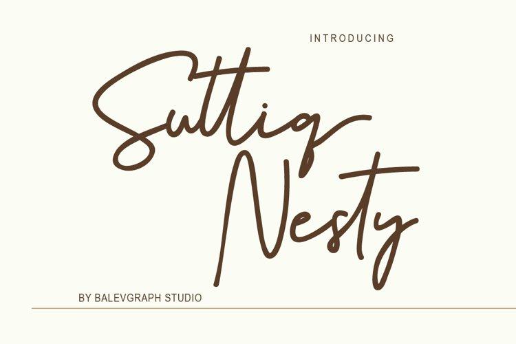Suttiq Nesty Handwritten Script Font example image 1