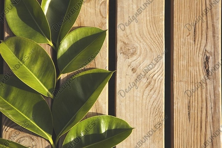 Mockup from wooden planks. Frame made from green leaves. example image 1