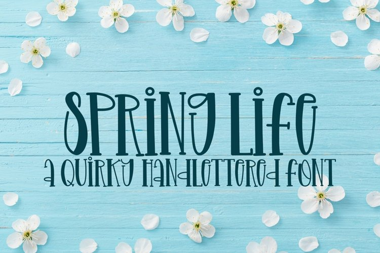Web Font Spring Life - A Quirky Handlettered Font example image 1