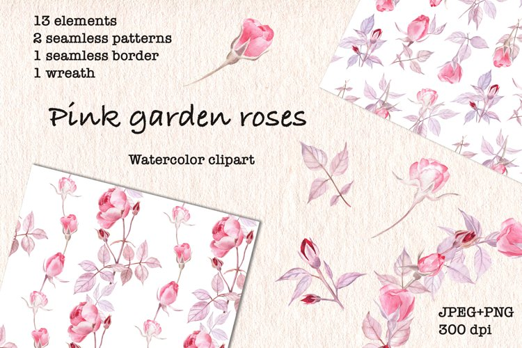 Watercolor Clipart Pink Garden Roses. JPEG, PNG example image 1