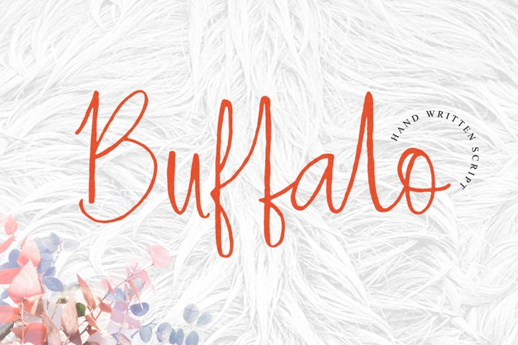 Hey Buffalo example image 1