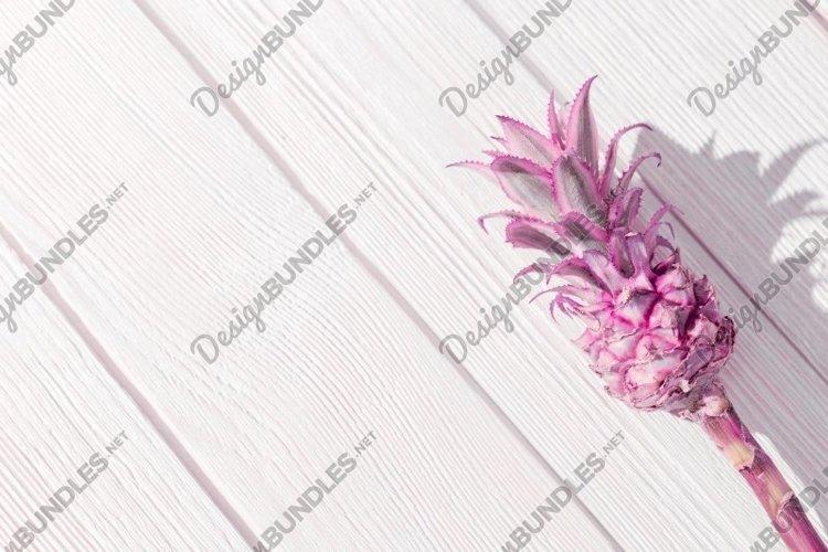 Dwarf Ornamental purple Pineapple flower on white wooden