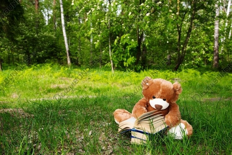 A Teddy bear reading book on green grass example image 1