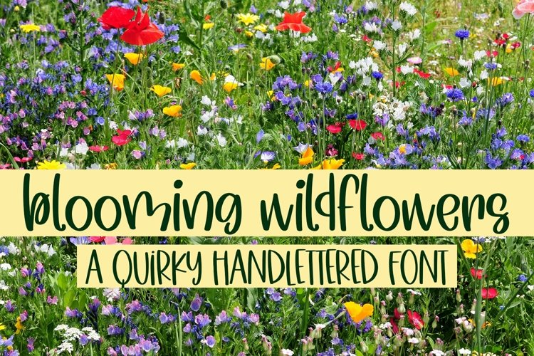 Web Font Blooming Wildflowers - A Quirky Handlettered Font example image 1
