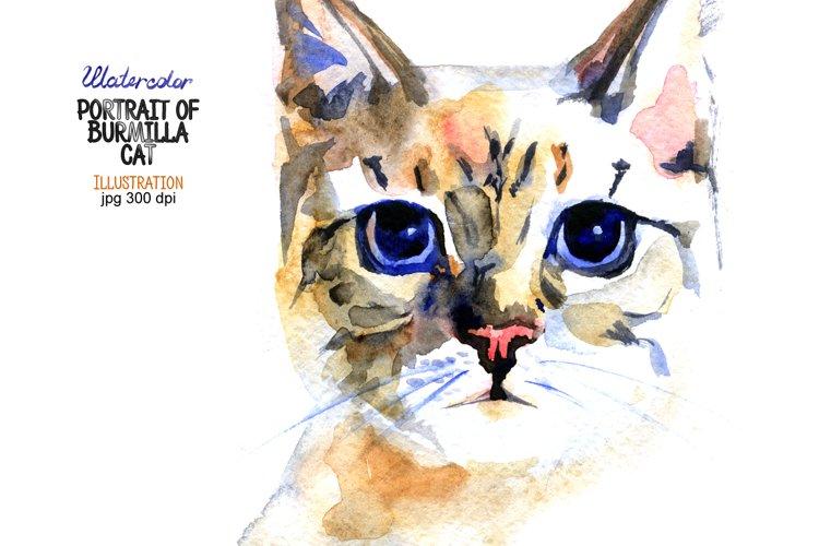Watercolor portrait of Burmilla cat example image 1