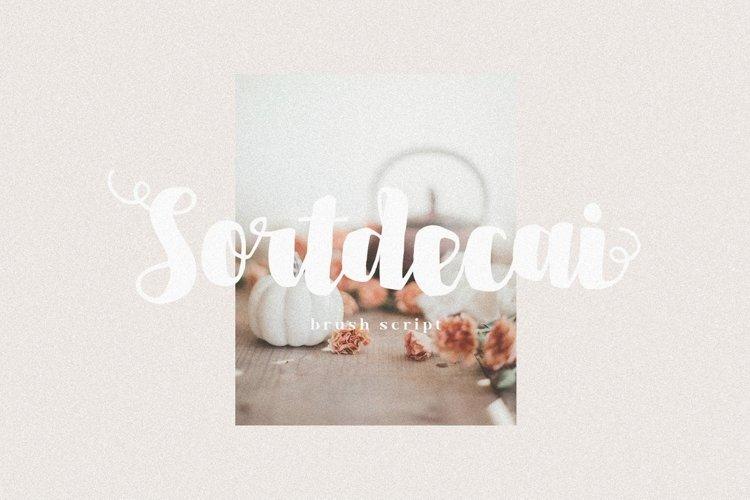 Sortdecai - Brush Font
