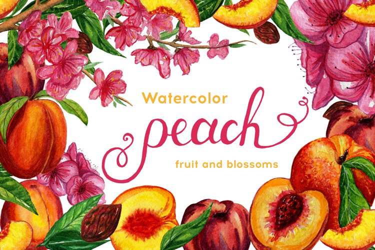 Watercolor peaches set
