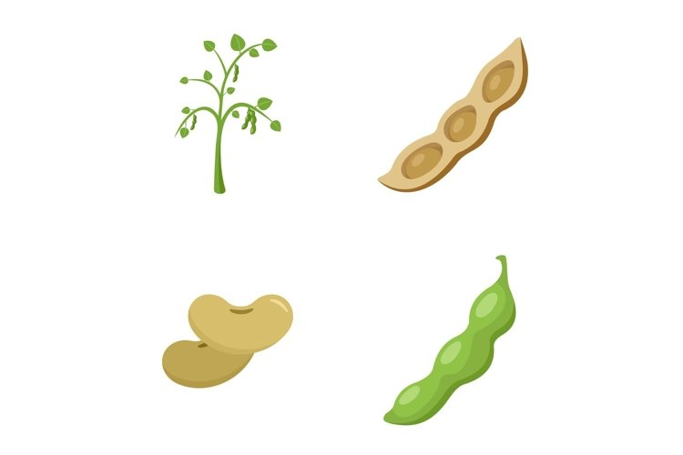 Soybean soy beans seed icons set flat style example image 1
