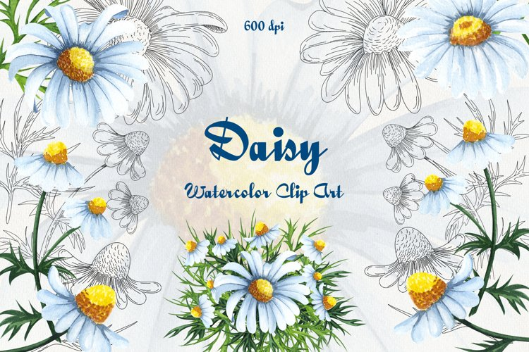 Daisy Watercolor Clipart example image 1