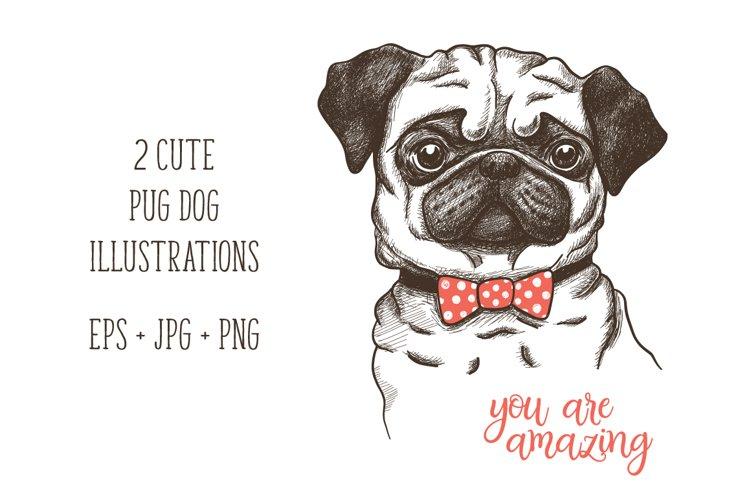 hand drawn funny fashionable pug