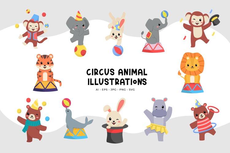 Circus Animal Illustrations
