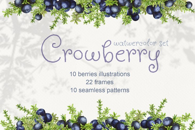 Crowberry. Watercolor set illustrations example image 1
