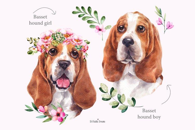Basset hound portrait, watercolor dog, dog clipart, wreath