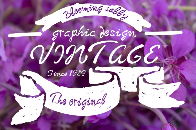 Blooming sally font example image 1
