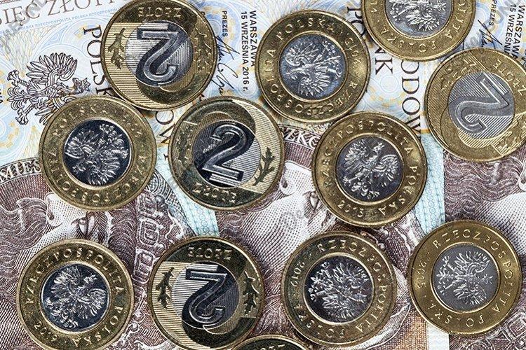 cash or Polish money example image 1