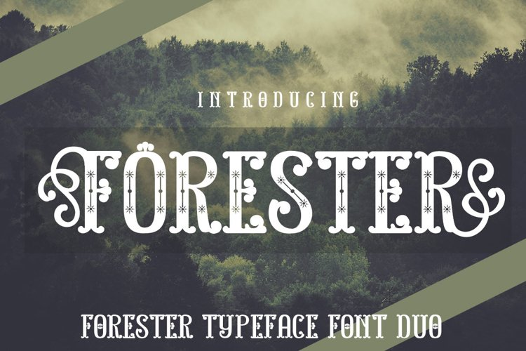 FORESTER example image 1