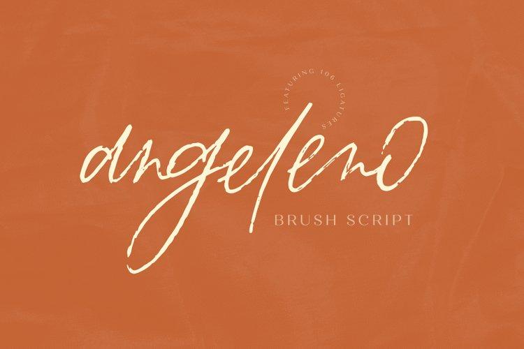 Angeleno Brush Script example image 1