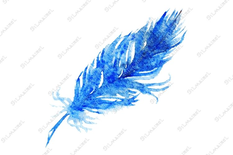 Watercolor single navy blue bird feather isolated example image 1