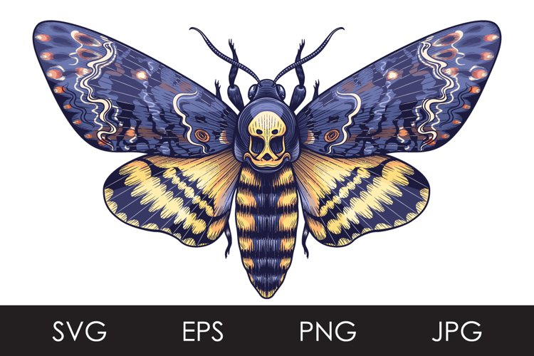 Death's-Head Hawk Moth SVG, PNG example image 1