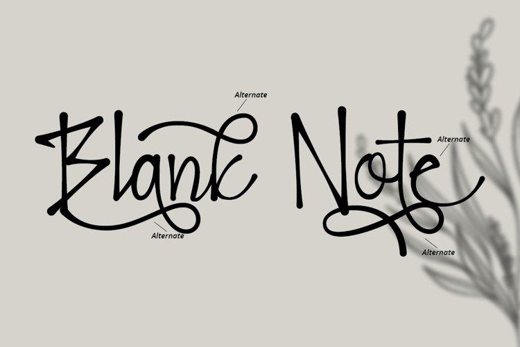 Blank Note - Ink Handwritten Font example 2