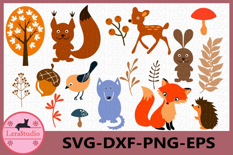 Forest Animals Svg, Woodland Animals Frames SVG, Animal Svg example image 1