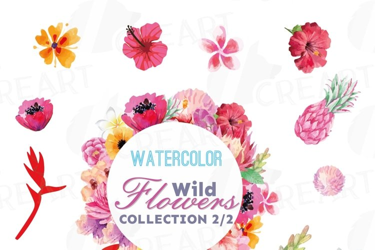 Watercolor wild flowers clip art pack, exotic watercolor flowers valentine clip art. Eps, png, jpg, svg,  vector files included. Part 2/2 example image 1