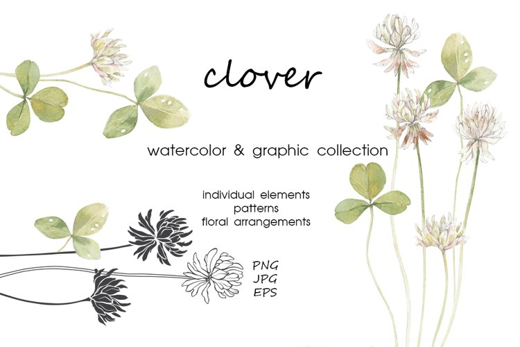 Clover. Watercolor & graphic. example image 1