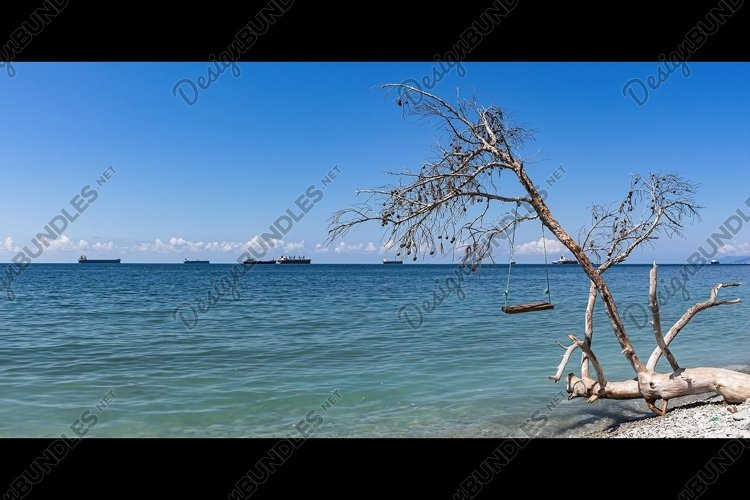 Panorama of seascapes, swings on a fallen tree. 2pcs example image 1