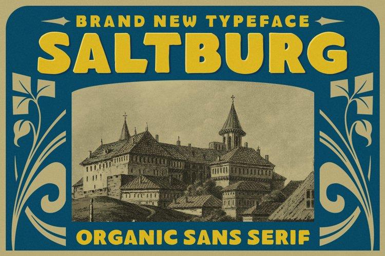 Saltburg - Organic Sans Serif example image 1