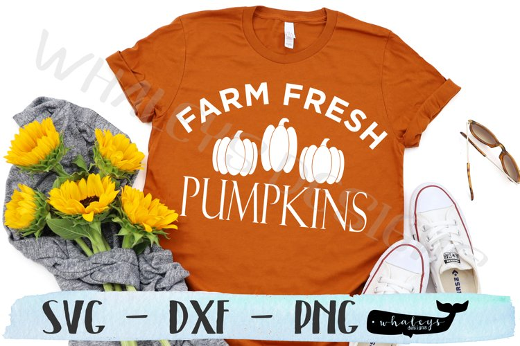 Farm Fresh Pumpkins - Fall, Thanksgiving, Autumn, Halloween example image 1