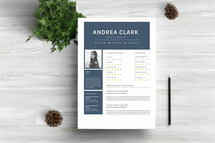 Chic Word Resume Template CV example image 1