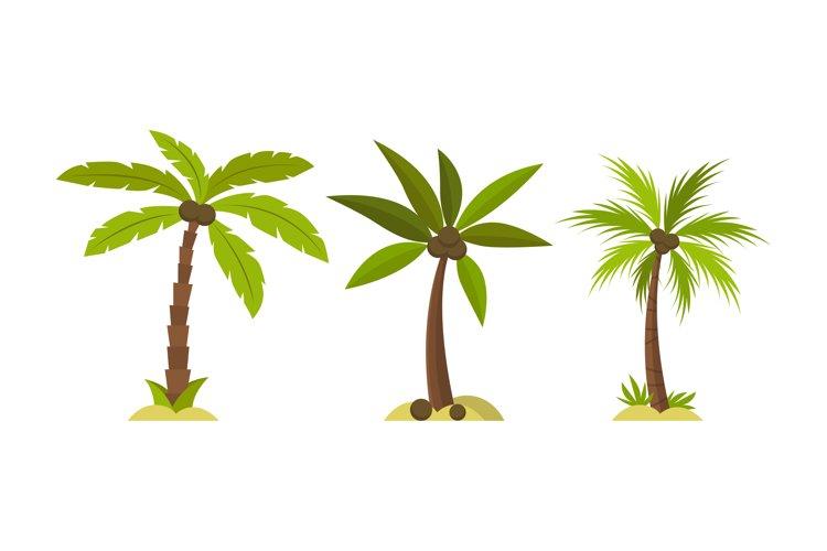 Palm Tree Illustrations, example image 1