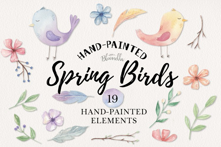 Spring Birds Easter Flower Watercolor 19 Elements Floral