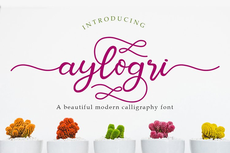 Aylogri | A Beautiiful Calligraphy Font example image 1